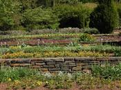 Comment construire jardin terrasse dans votre cour
