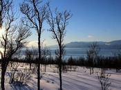 semaine Norvège Lyngen Alps