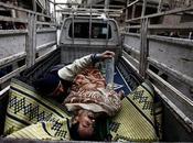 [Lauréat.e.s Visa d'Or humanitaire CICR] Mani Benchelah, 2012 Syrie, dans Homs