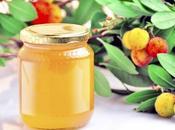 CANCER COLORECTAL miel d'arbousier inhibe prolifération tumorale