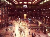 grande galerie l'évolution Muséum National d'Histoire Naturelle