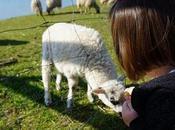 petites astuces (amusantes) pour sensibiliser enfants l'écologie