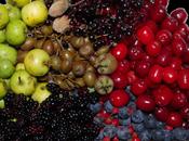 Fruits sauvages mois d'août