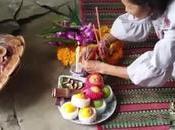 Thaïlande,un ganoderme luisant fait gagner loterie