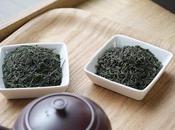 Cultivar Yamanami, kamairi sencha