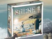 Preview Saline Maxime Blandin chez Chèvre Edition
