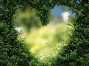 clôture pour sublimer votre jardin