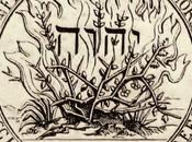 confessions réformées continentales sont théonomiques
