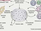 #trendsincellbiology #cancer #métabolismecellulaire Métabolisme l'Azote, Cancer Immunité