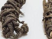 scientifiques identifient cordage tendon utilisé Otzi, l'homme glaces