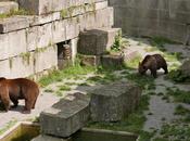 Parc ours Tierpark