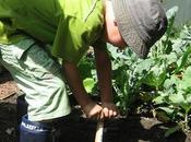 jardinage joue rôle important motricité votre enfant