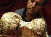 Découverte paléontologique dans pampa [Actu]