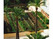 nature s'immisce aussi dans nouvelles constructions françaises