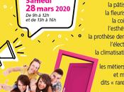 Publicité Site Internet Benjamin Griveaux Agence publicité internet Nîmes