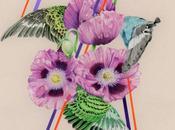 illustrations poétiques Jessica Tenbusch