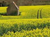 Agriculteur bailleur location touristique