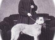 L'impératrice d'Autriche adore chiens