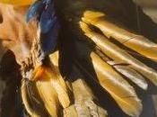 L'art plume Amazonie