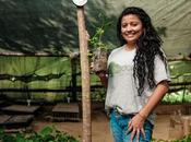 Plantez offrez arbre avec Treedom