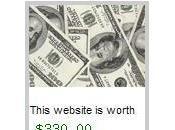 Combien vaut votre site