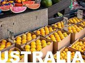 Saveurs d'Australie nouveau concours photo Wipplay, collaboration avec Carreau Temple