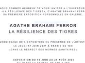 Galerie Sabine Bayasli exposition Agathe Brahami Ferron résilience Tigres partir Juin 2021