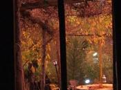 joies d'automne Herbstfreuden pleasure automn